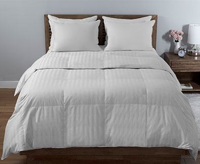 Shop Beautyrest Comforters
