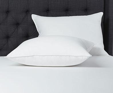 Shop Beautyrest Pillows