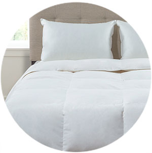 Shop Beautyrest Comforters